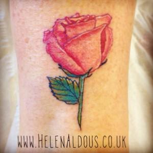 Realistic rose tattoo. Huddersfield